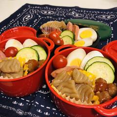 ハム/ミートボール/ゆで卵/ミニトマト/ズッキーニ/こんにゃく/... 今日のお弁当  昨日 食洗機が 壊れまし…