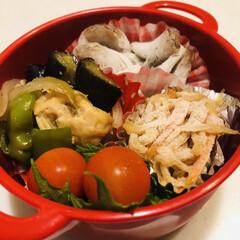 茄子/ピーマン/鶏胸肉/切干大根/こんにゃく/ミニトマト/... 今日のお弁当  夏野菜と鶏胸肉の生姜炒め…