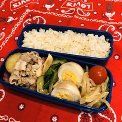 ミニトマト/娘弁当/さつま芋/豚肉/ゆで卵/青梗菜/... 今日のお弁当  熱は出なかったけど、人間…