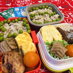ヤマキ 割烹白だし1000ml ×2本(だし、ブイヨン、がらスープ)を使ったクチコミ「今日のお弁当  鯖の煮付け 卵焼き 焼き…」