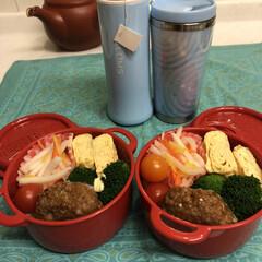 料理/手作り/作り置き/お弁当/おうち/ごはん/... 今日のお弁当  ハンバーグ 卵焼き なま…