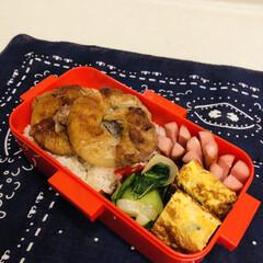 おうちごはんクラブ/LIMIAごはんクラブ/卵焼き/ウインナー/オイスターソース/青梗菜/... 今日のお弁当  玉ねぎの肉巻き 卵焼き …