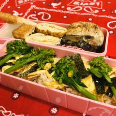 イワシ/ちくわ/厚揚げ/大根/卵焼き/菜花/... 今日のお弁当  ちらし寿司 しらす入り卵…