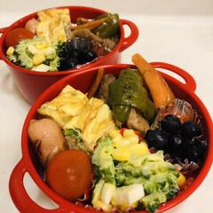 玉ねぎ/人参/豚肉/ウインナー/ブルーベリー/ゆで卵/... 今日のお弁当  酢豚風炒め物 ミニトマト…