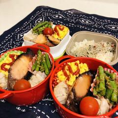 ボヌール/ブリ/卵/いんげん豆/焼売/自分弁当/... 今日のお弁当  ブリの照り焼き 焼売 ス…