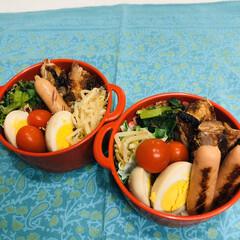 ミニトマト/ゆで卵/小松菜/鳥もも肉/自分弁当/おうちごはんクラブ/... 今日のお弁当  鳥の照り焼き 小松菜お浸…