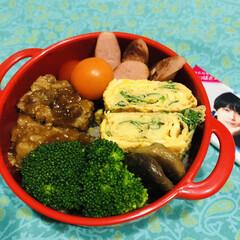 お弁当/料理/作り置き/手作り/わたしのごはん 今日のお弁当  ハンバーグ 卵焼き 焼き…