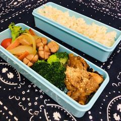 料理/手作り/お弁当/作り置き/おうち/ごはん/... 今日のお弁当  ミートグラタン ウインナ…