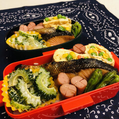 娘弁当/ミックスベジタブル/卵焼き/ウインナー/鮭/シシトウ/... 今日のお弁当  鮭 卵焼き ウインナー …