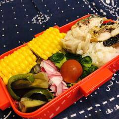 紫玉ねぎ/ピーマン/ミニトマト/鯖/トウモロコシ/焼売/... 今日のお弁当  今日は、次女の 球技大会…