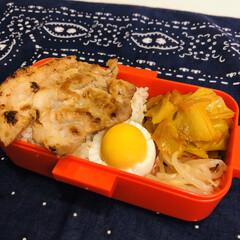 豚肉/ゆで卵/もやし/お酢/玉ねぎ/キャベツ/... 今日のお弁当  生姜焼き ゆで卵 酢もや…