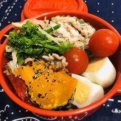ニンニク/おから/豚肉/菜花/カボチャ/ゆで卵/... 今日のお弁当   菜花と豚肉のニンニク炒…
