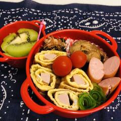 おうちごはんクラブ/LIMIAごはんクラブ/ミニトマト/きゅうり/ウインナー/卵焼き/... 今日のお弁当  サハ味噌煮(缶詰) 卵焼…