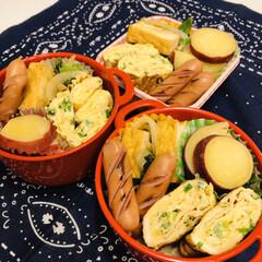 娘弁当/自分弁当/ウインナー/卵焼き/厚揚げ/小松菜/... 今日のお弁当  さつま芋のレモン煮 小松…