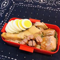 娘弁当/シャケ/かぼちゃの煮物/ウインナー/ゆで卵/お弁当/... 今日のお弁当
