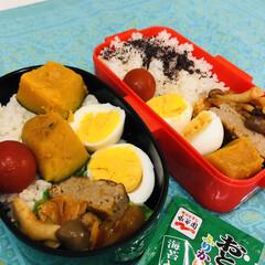 ゆで卵/ハンバーグトマトジュース煮/かぼちゃの煮物/ミニトマト/娘弁当/お弁当/... 今日のお弁当