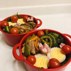 おうちごはんクラブ/LIMIAごはんクラブ/ゴーヤ/ミニトマト/ウインナー/ゆで卵/... 今日のお弁当  酢豚風炒め物 味たまご …