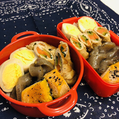 娘弁当/肉巻き/こんにゃく/カボチャ/ゆで卵/ご飯/... 今日のお弁当  野菜肉巻き 味付きたまご…