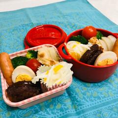 ミニトマト/ブロッコリー/ウインナー/柚子/大根/ハンバーグ/... 今日のお弁当  ハンバーグ ウインナー …