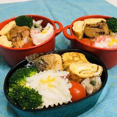 大根/ゆず/ミニトマト/ブロッコリー/卵焼き/鯖缶/... 今日のお弁当  鯖の味噌煮(鯖缶) ブロ…