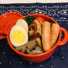 こんにゃく/ゆで卵/ハンバーグ/ミニトマト/ブロッコリー/娘弁当/... 今日のお弁当  ハンバーグ ウインナー …