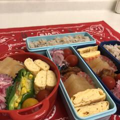 紫玉ねぎ/ミニトマト/大根の煮物/卵焼き/唐揚げ/ボヌール/... 今日のお弁当