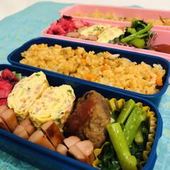 ビーツサラダ/オイスターソース/ツルムラサキ/炊き込みご飯/鯖缶/ハンバーグ/... 今日のお弁当  ハンバーグ ツルムラサキ…