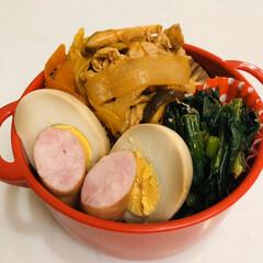 トマト缶/ほうれん草/おうちごはんクラブ/LIMIAごはんクラブ/ウインナー/ゆで卵/... 今日のお弁当  トマト煮込み ほうれん草…