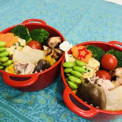 お弁当/手作り/料理/作り置き/わたしのごはん 今日のお弁当  鶏照り焼き 卵焼き 大根…