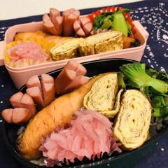 卵焼き/鮭/おうちごはんクラブ/LIMIAごはんクラブ/娘弁当/自分弁当/... 今日のお弁当  焼鮭 卵焼き 青梗菜のお…