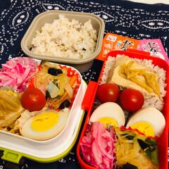 うまい村デイリー 味の素 惣菜中華の素 麻婆春雨 甘口 155g x8(春雨)を使ったクチコミ「今日のお弁当 1枚目 食洗機を 買い換え…」