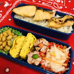 お弁当/作り置き/手作り/料理/わたしのごはん 今日のお弁当  今日は暖かいです!晴れ…