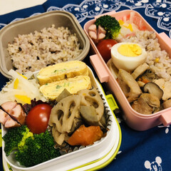ブロッコリー/ウインナー/ゆで卵/鶏肉/人参/蓮根/... 今日のお弁当  根野菜の煮物 ウインナー…