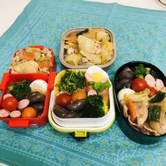 お弁当/お料理/手作り/ごはん/おうちごはん/ハンドメイド 今日のお弁当   中華丼 菜の花のおひた…