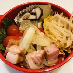 もやし/ミニトマト/椎茸/冬瓜/おうちごはんクラブ/LIMIAごはんクラブ/... 今日のお弁当  ベーコンと玉ねぎのハーブ…