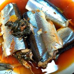 旬の食材/秋刀魚の梅煮/梅煮/さんま/秋刀魚/秋/... 時期の初め頃に作った秋刀魚の梅煮 今年は…
