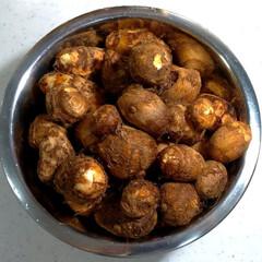 里芋 山のような里芋…どうしよう…