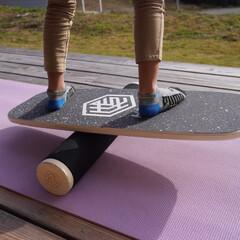 体幹/体幹トレーニング/バランスボードX/バランスボード @hexal_balance さんから素…(1枚目)