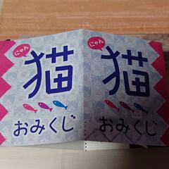 ニャンコ同好会 大阪にある、少彦名神社へお参りへ 今年も…