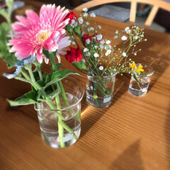 玄関/植物/元気/お外に出す/多肉ちゃんたち/いい感じ/... 今日のお花☆  先日手に入れた耐熱ビーカ…