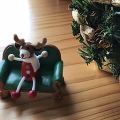 休憩/トナカイ/ツリー/雑貨/玄関/クリスマス ちょこっとクリスマス☆  玄関でトナカイ…