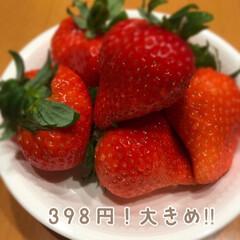 大粒/トースト/大腹/小腹/おうち/398円/... いちごがお安くなりました☆  大粒いちご…