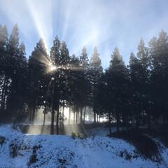 冬/実家/朝/景色/雪/風景 朝の雪景色☆  雪も止んで今日は晴れ♪
