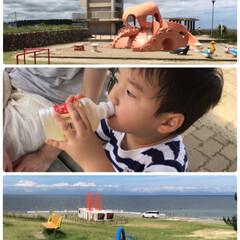 楽しむ/初えだ豆/発泡酒/かつて行きつけ/パスタ/ランチ/... 海の近くの公園☆  今日は海の日♪ 海の…