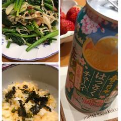 お酒/手作り/美味しい/お気に入り/韓国のり/ぶっかけ/... 今日のお夕飯☆  お気に入りのはっさくチ…