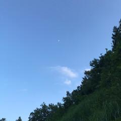 暑過ぎるくらい/いい天気/久しぶり/野の花/青空/見た/... 夕日・月・野の花☆  夕方散歩で見た夕日…(2枚目)