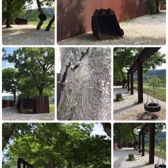 タイヤブランコ/公園/気持ちいい/澄んだ空気/ちょっと曇り/朝から/... 朝からおでかけ☆  スカイラインをドライ…(2枚目)