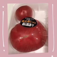 スーパー/1つだけで我慢/ぼた餅/小腹/リピート買い/美味しい/... おすすめトマト☆  新潟産の桃太郎トマト…