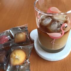 ペチュニア/紫陽花/庭/アイスコーヒー/プチケーキ/頂きもの/... 今日のおやつとお花☆  今日のおやつは……