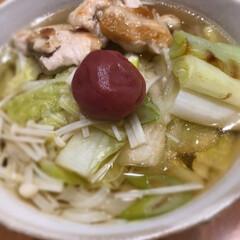 えのき/白菜/稲庭うどん/だし醤油/梅干し乗せ/鶏ねぎうどん/... 鶏ねぎうどん☆  鶏とねぎは焼いて♪ ス…